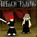 Bleach Training