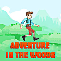 Adventure In The Woods